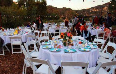 Reptacular Weddings